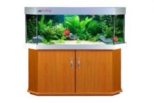 Altbekannte Aquarium Kombination Basic Panorama Form Aquarium Wandmodel