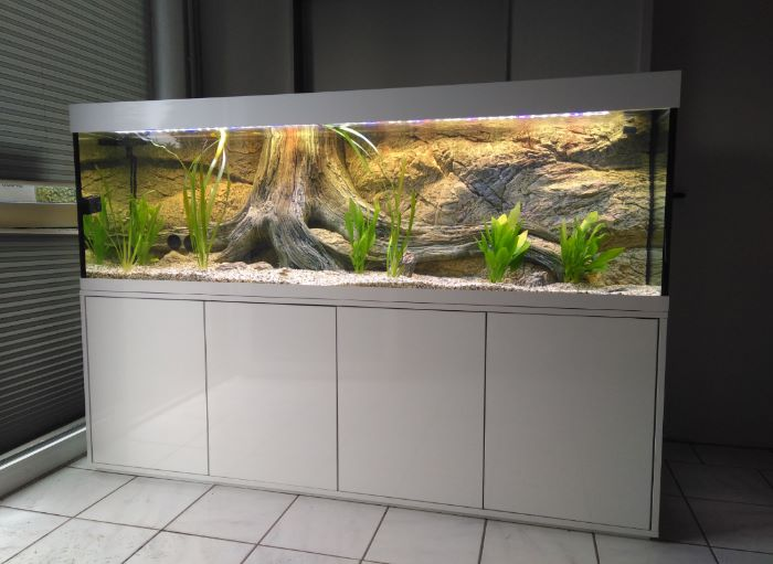 Moderne und günstige Aquariumkombination Eva Aquarium Kombination 1