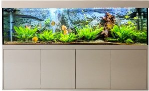 Aquarium Kombination direkt vom Hersteller