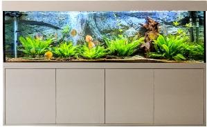 Aquarium kombination kaufen dein aquarium
