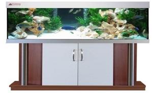 Aquarienkombination exclusiv plus kaufen