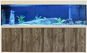 Aquarienkombination Modell Knut