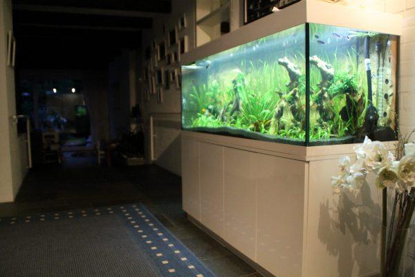 Aquarium Kombination Adam Hochglanz weiß