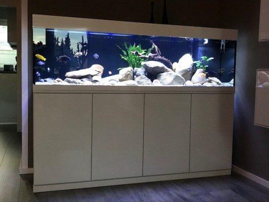 Aquarium Kombination Adam Hochglanz