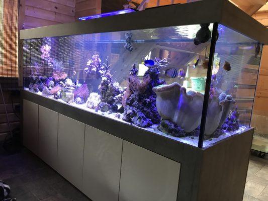 Aquarium Kombination Admiral Beton