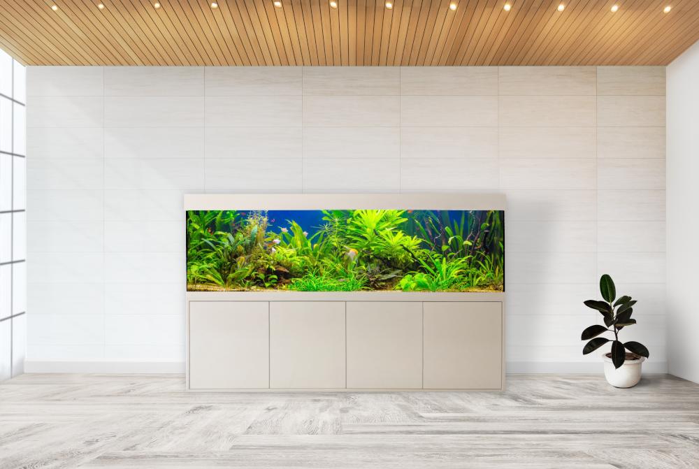 friedeberg designer aquarium kombination eva 250x80x70 mit aquarium led filter ebay. Black Bedroom Furniture Sets. Home Design Ideas