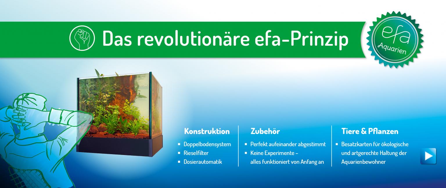 Aquarien auch in Verbindung mit dem revolutionären efa-Prinzip