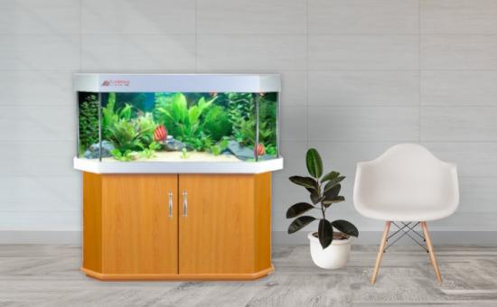 Aquarium Bau Friedeberg Modell Basic Panorama optional mit Filter von OASE Eheim Fluval Juwel und Heizstab Beleuchtung JMB Aqualight Schrank Abdeckung Aquarium aus hochwertigem Floatglas oder Weißglas