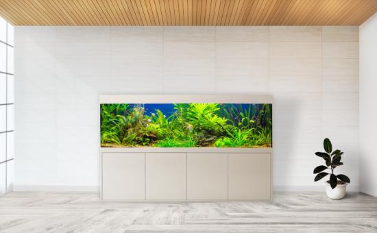 Aquarium Bau Friedeberg Modell Eva optional mit Filter von OASE Eheim Fluval Juwel und Heizstab Beleuchtung JMB Aqualight Schrank Abdeckung Aquarium aus hochwertigem Floatglas oder Weißglas