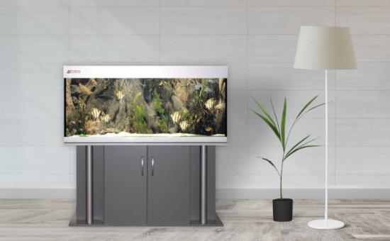 Aquarium Bau Friedeberg Modell Exklusiv optional mit Filter von OASE Eheim Fluval Juwel und Heizstab Beleuchtung JMB Aqualight Schrank Abdeckung Aquarium aus hochwertigem Floatglas oder Weißglas