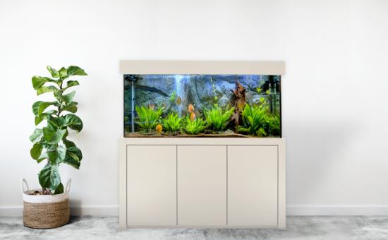 Aquarium Bau Friedeberg Modell Unser Neuer optional mit Filter von OASE Eheim Fluval Juwel und Heizstab Beleuchtung JMB Aqualight Schrank Abdeckung Aquarium aus hochwertigem Floatglas oder Weißglas