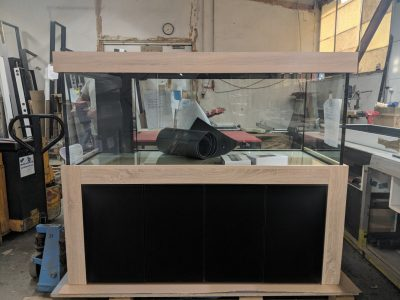 Aquarium-Kombination-Admiral-Buche-Diamant-geschliffen-Floatglas-Sonderanfertigung-Friedeberg-Rückscheibe-schwarz-lackiert