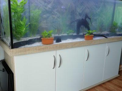 Aquarienkombination online kaufen