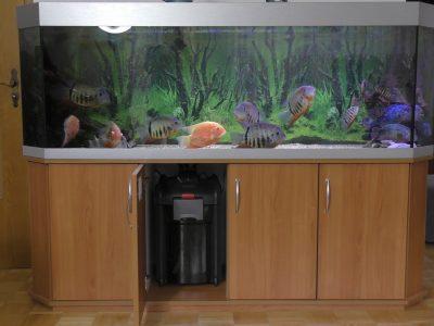 Aquarium-Kombination-Basic-Panorama-Kirsche-Oxford-Silber-Metallic-Diamant-geschliffen-Floatglas-Sonderanfertigung-Friedeberg-Moosgummiunterlage-3