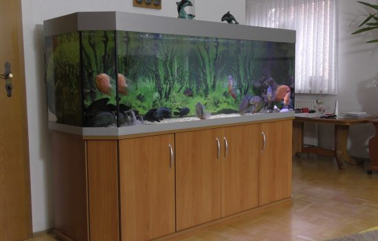 Aquarium-Kombination-Basic-Panorama-Kirsche-Oxford-Silber-Metallic-Diamant-geschliffen-Floatglas-Sonderanfertigung-Friedeberg-Moosgummiunterlage-4