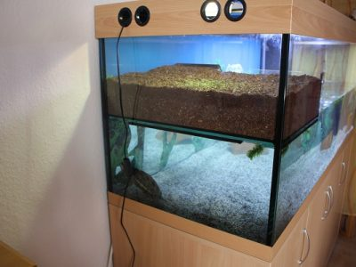 Aquarium-Kombination-Eva-Buche-Diamant-geschliffen-Floatglas-Sonderanfertigung-Friedeberg-Privat-Kunde