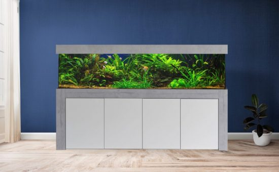 Aquarium Kombination Modern Designer Wohnzimmer mit Aquarium Admrial optional mit Aquarium LED Beleuchtung direkt vom Hersteller preiswert kaufen_