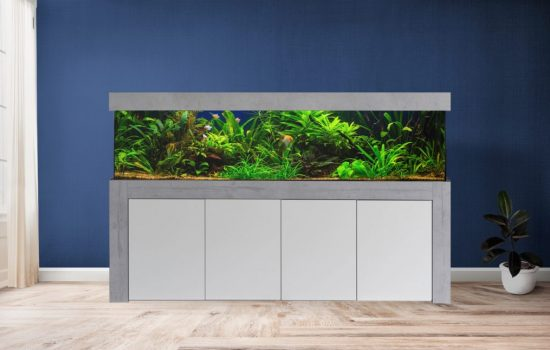 Aquarium Kombination Modern Designer Wohnzimmer mit Aquarium Admrial optional mit Aquarium LED Beleuchtung direkt vom Hersteller preiswert kaufen_