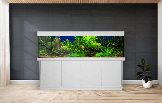 Modell Basic Plus Aquariumkombination kaufen